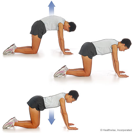 Healyth & Fitness