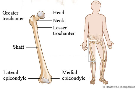 Leg Problems Non Injury Topic Overview
