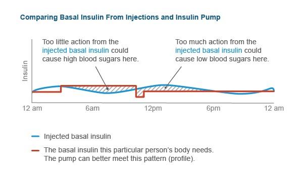 Basal Insulin Berechnen : basal insulin delivery ~ Themetempest.com Abrechnung