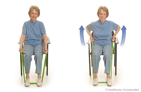 Program C: Seated Exercises With Elastic Bands and Soup Cans